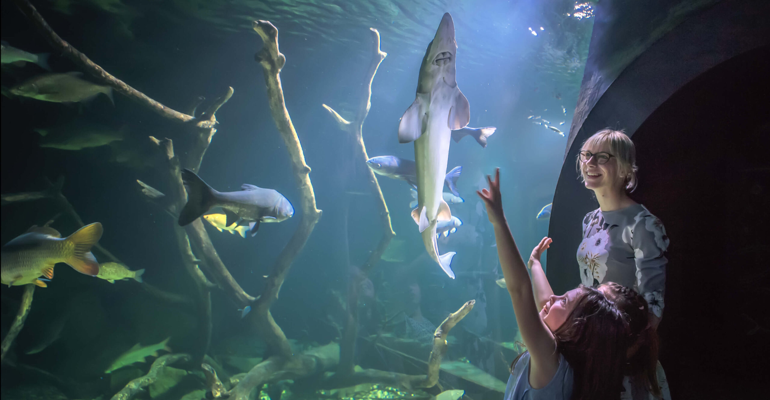 Aquarium Karlovac